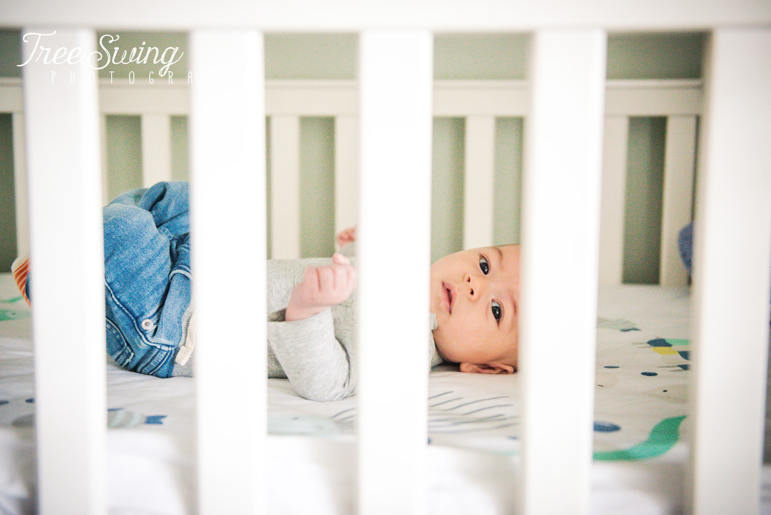 Lifestyle Newborn Session- Tree Swing Photography