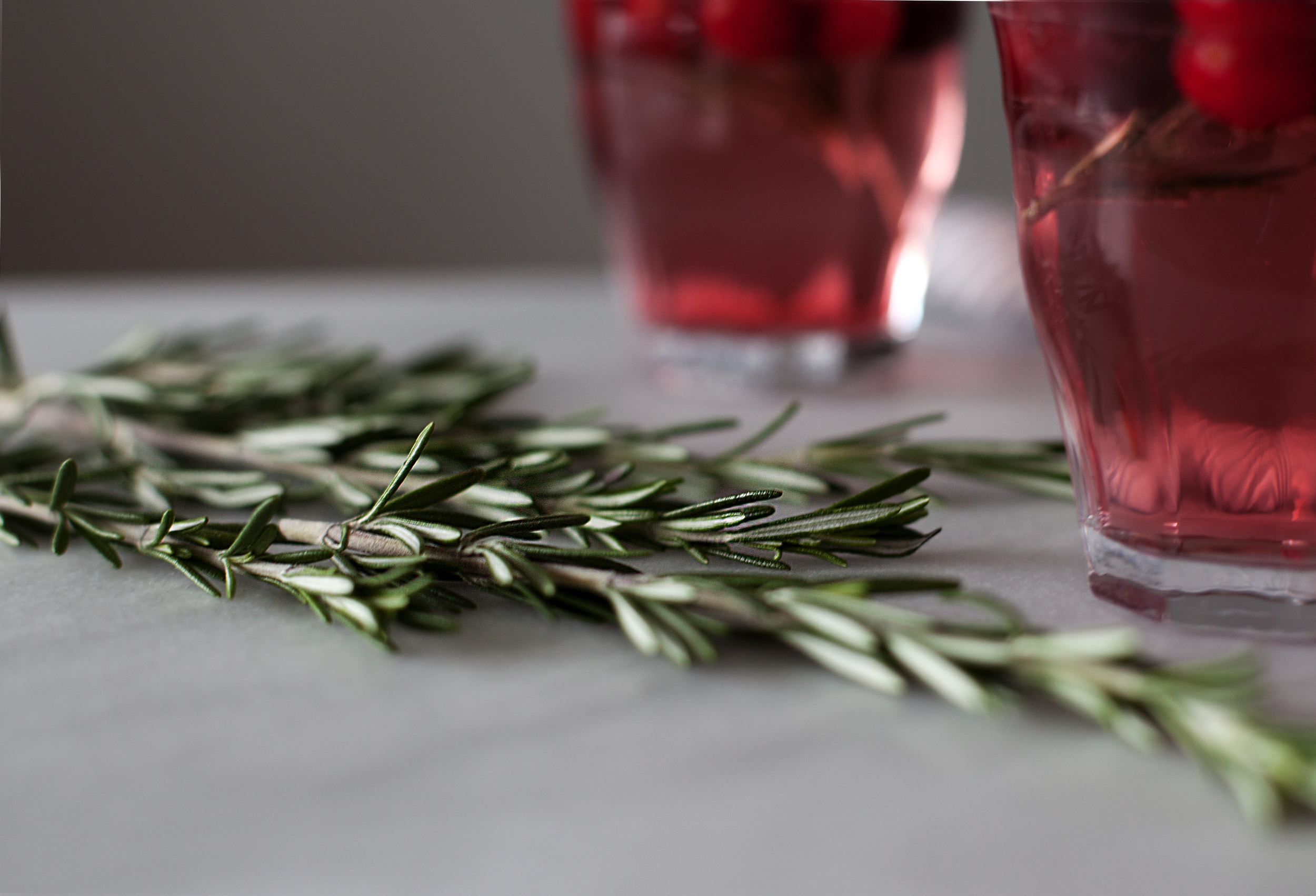 cranberry rosemark cocktail x.jpg