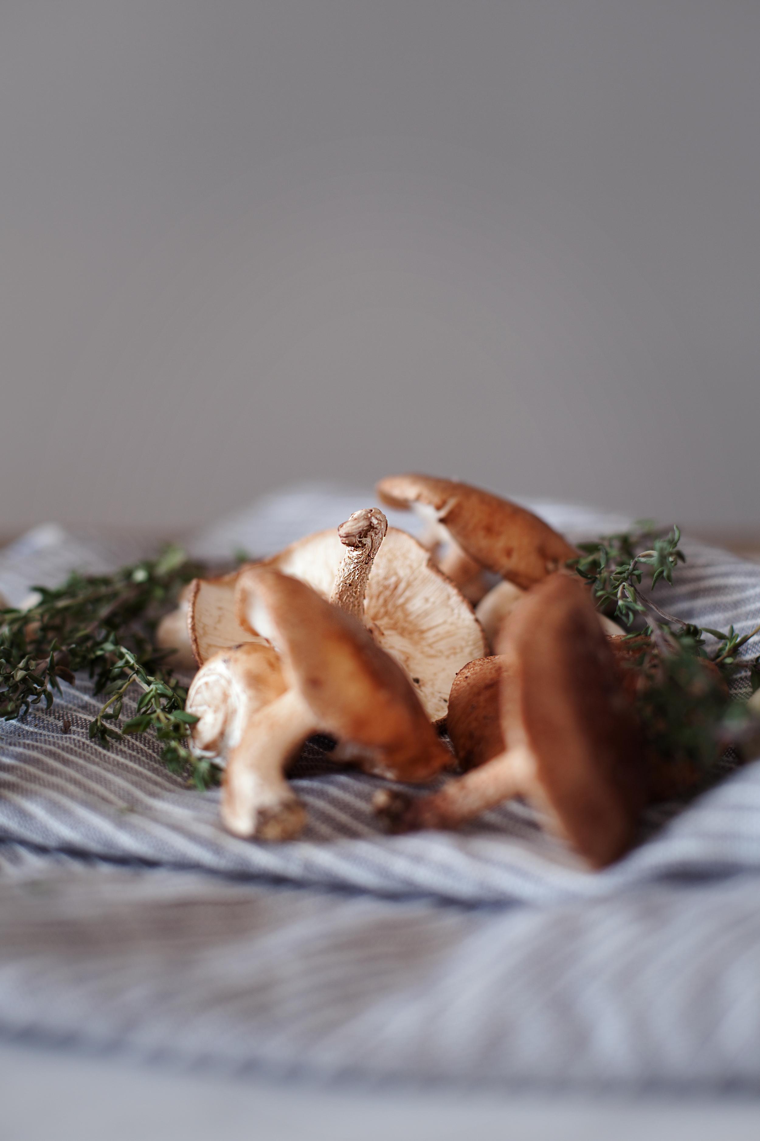 mushroom pastry iv.jpg