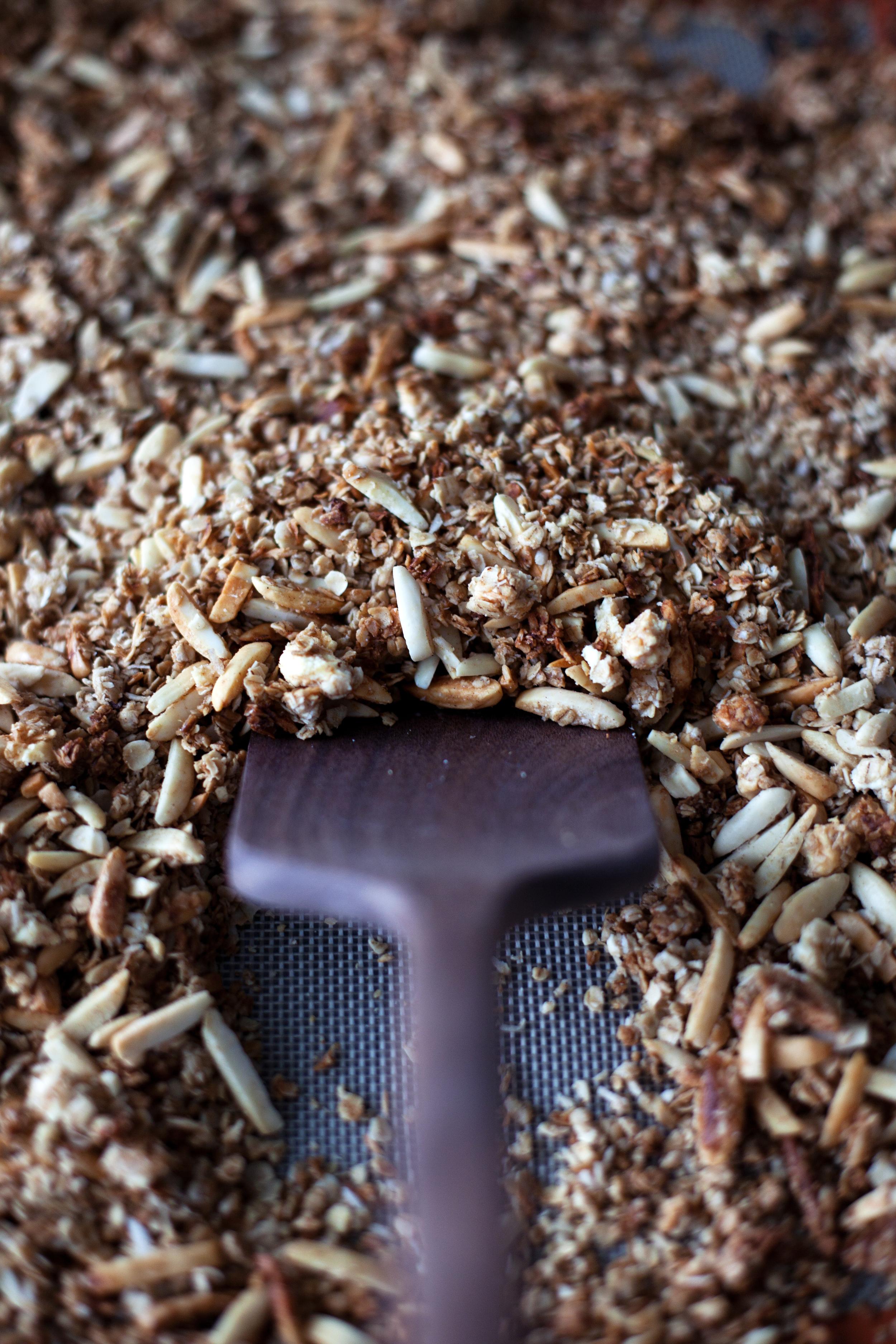 almond coconut granola vi.jpg