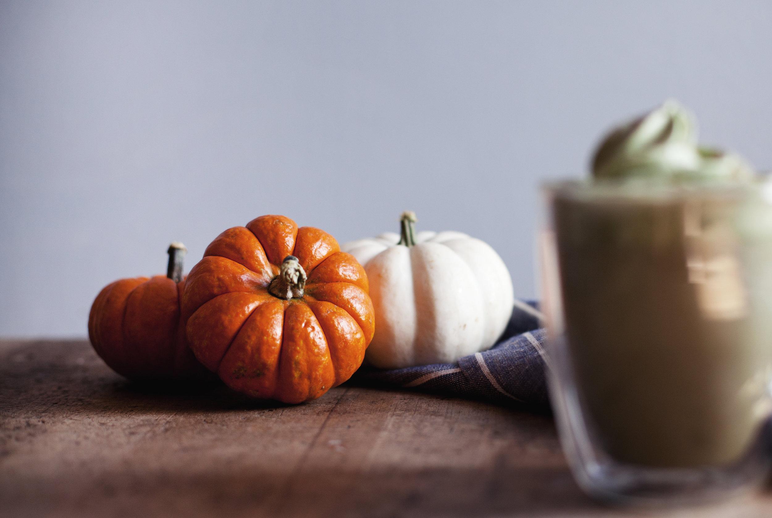 matcha pumpkin spice viiii.jpg