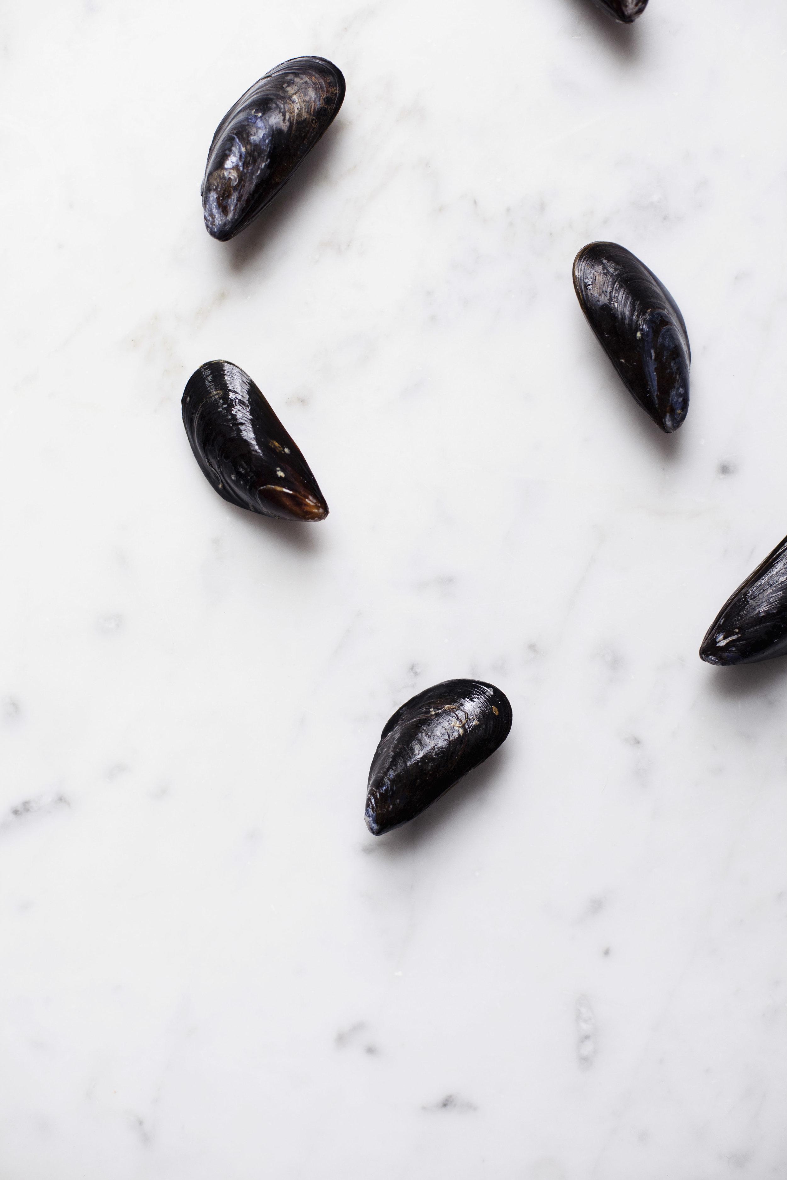 mussle pasta iii.jpg