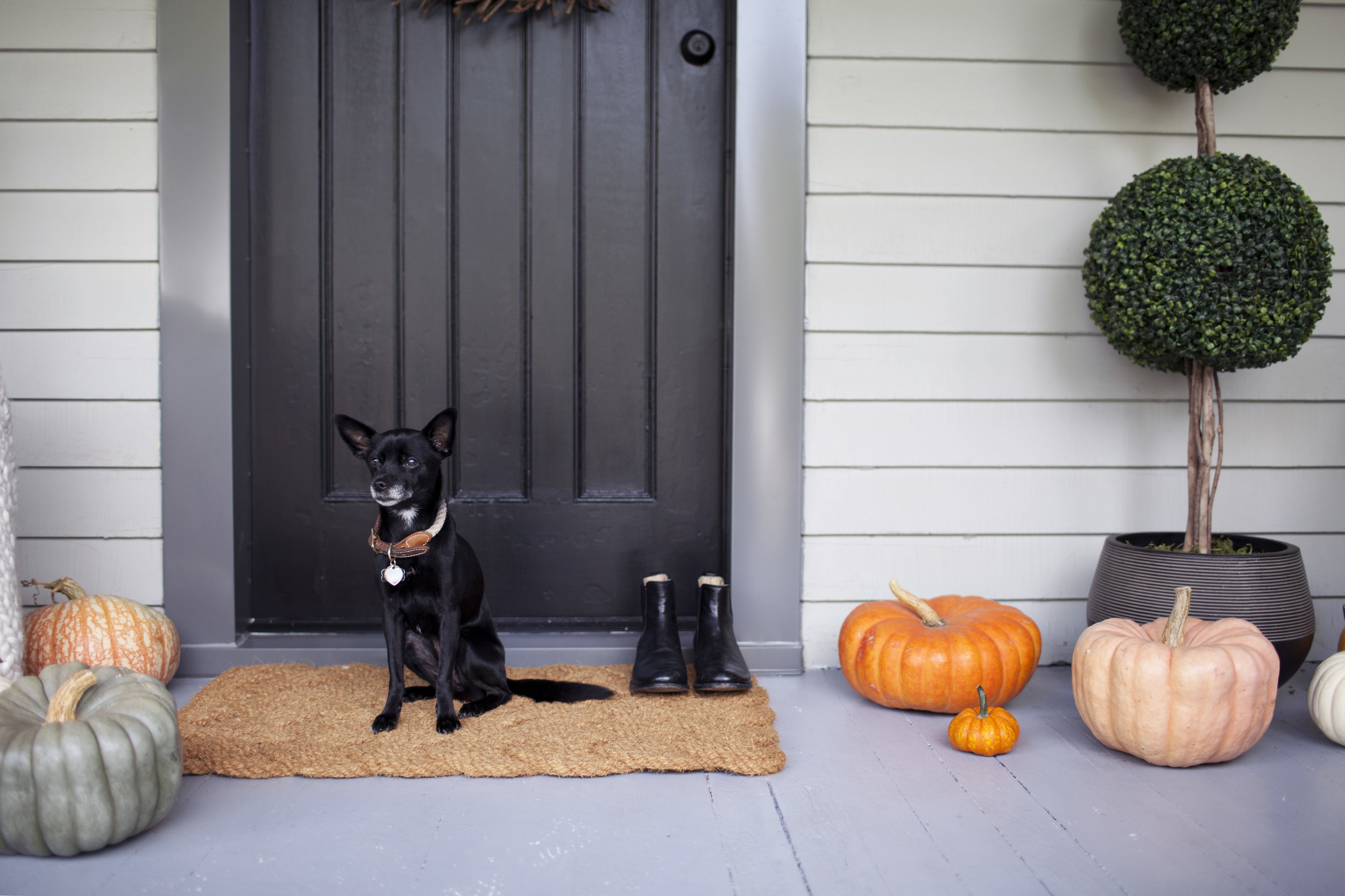 modest porch 2.jpg