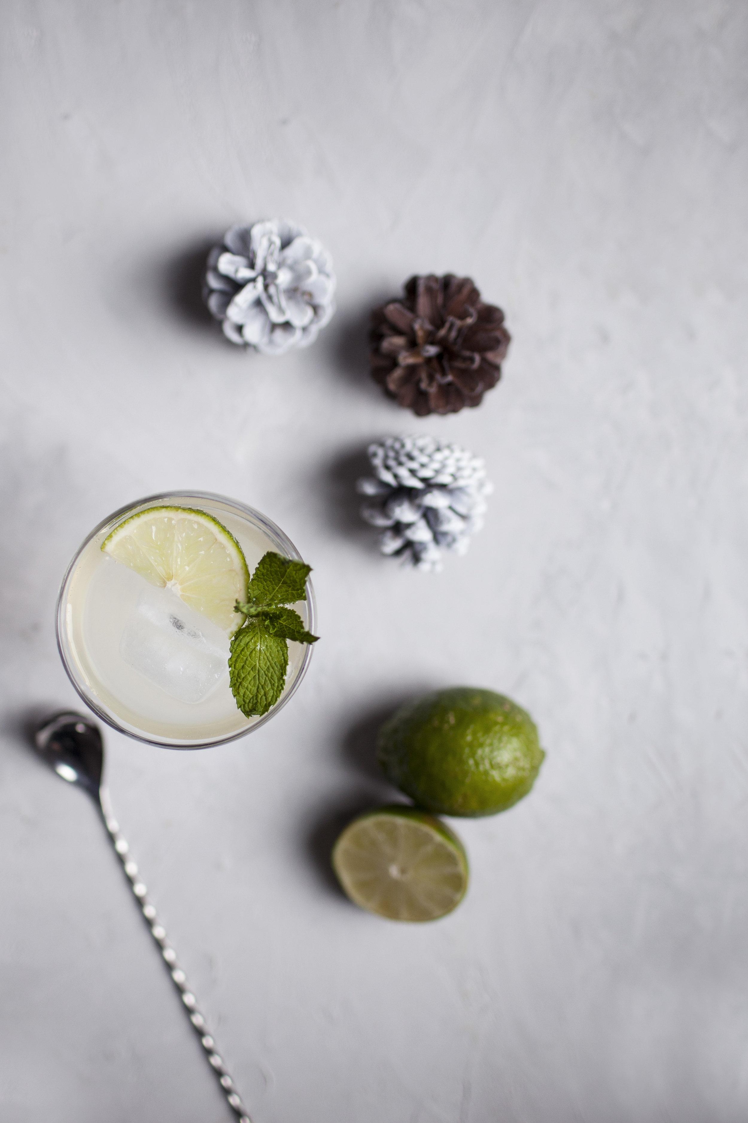 champagne ginger cocktail iv.jpg