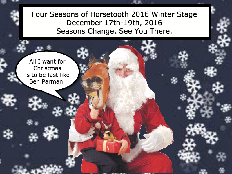horsewinter2016.png