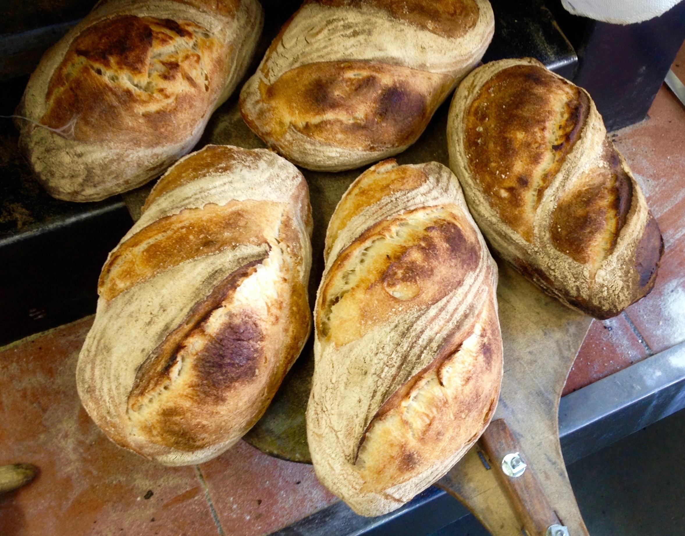 Spelt and Wheat Sourdough