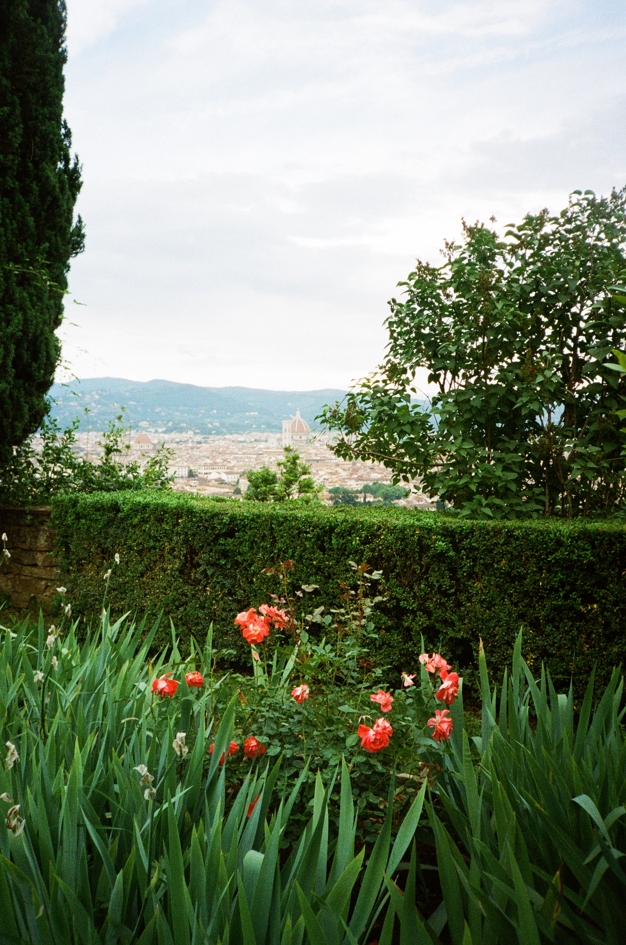 italy-florence-film-45.jpg