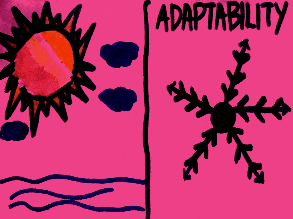 Adaptability StrengthsFinder Singapore Winter Summer