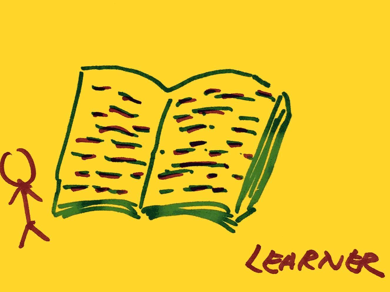 Learner Strengthsfinder Big Book Small Guy
