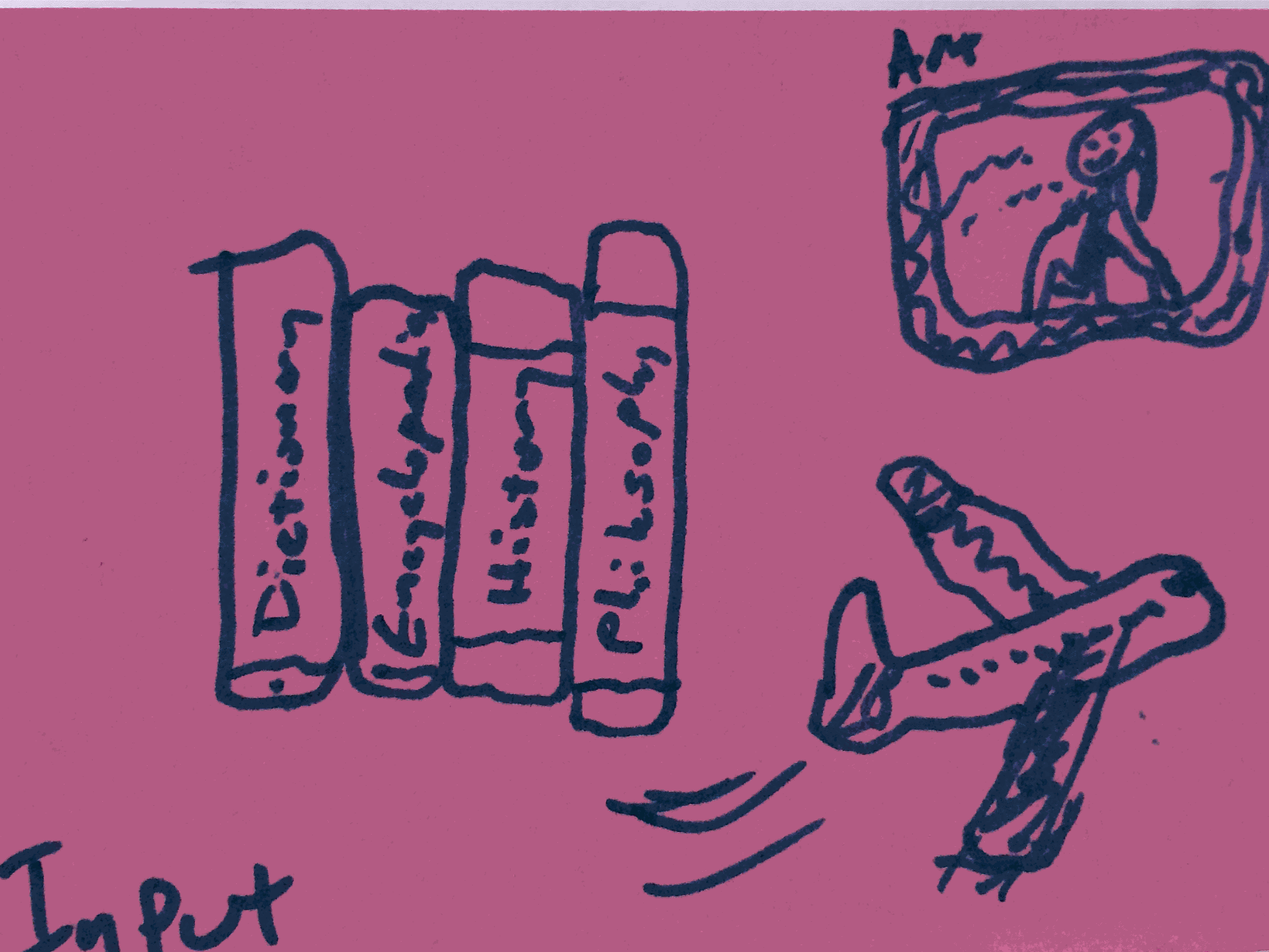 Input Strengthsfinder Books Aeroplane Collectors' Items