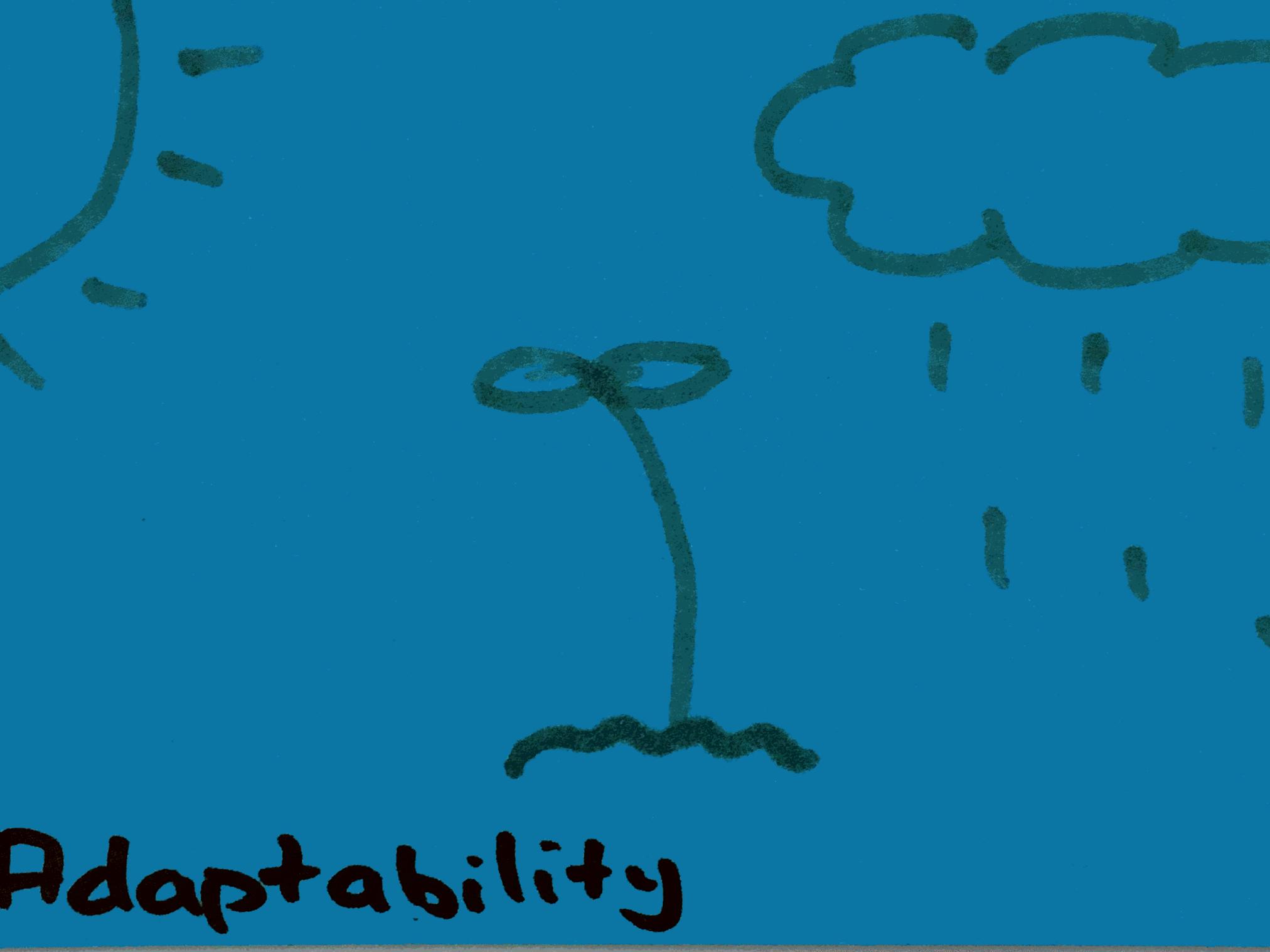 Adaptability Strengthsfinder Thriving in Rain or Sunshine