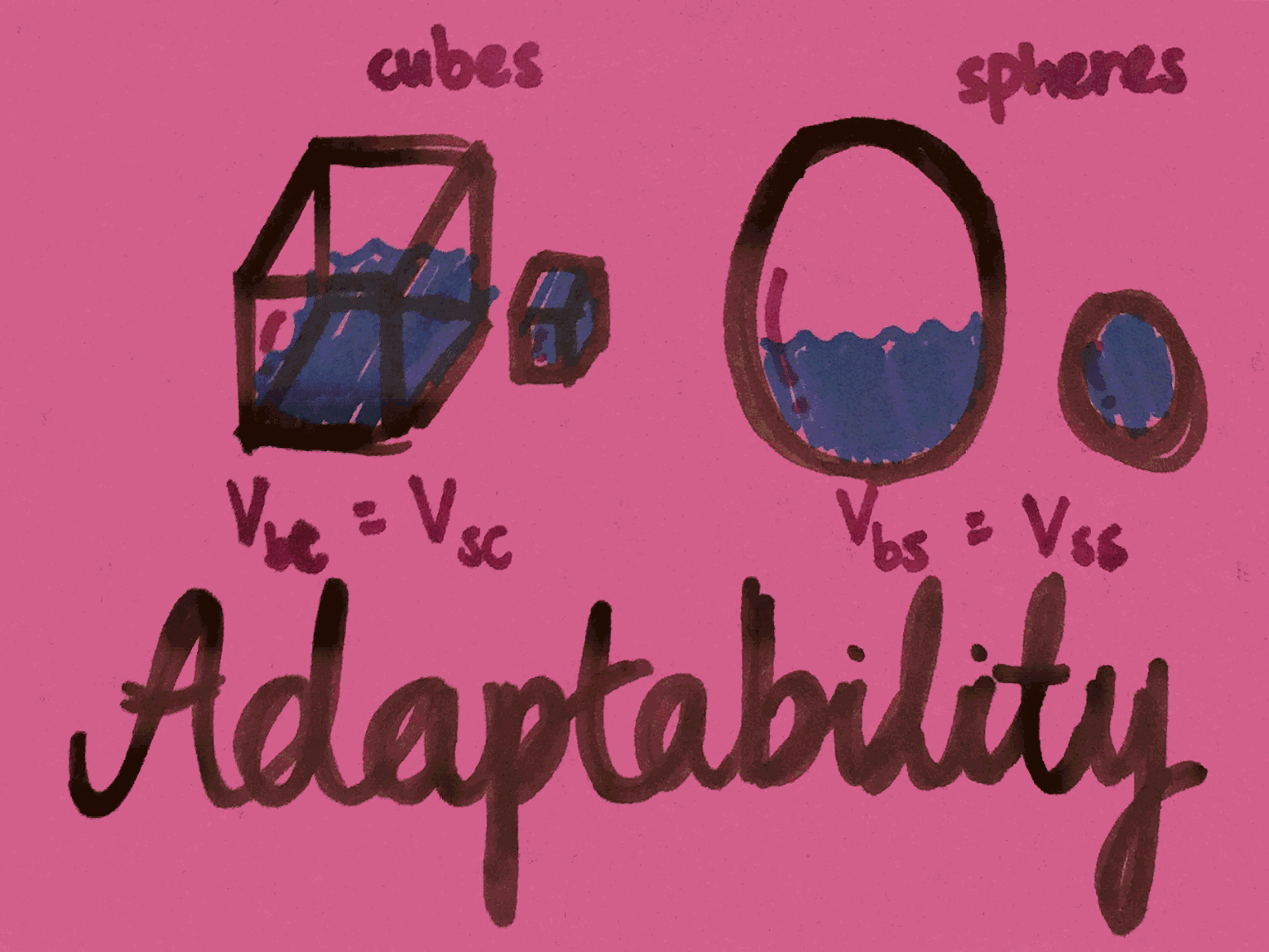 Adaptability Strengthsfinder Water in Cubes and Spheres
