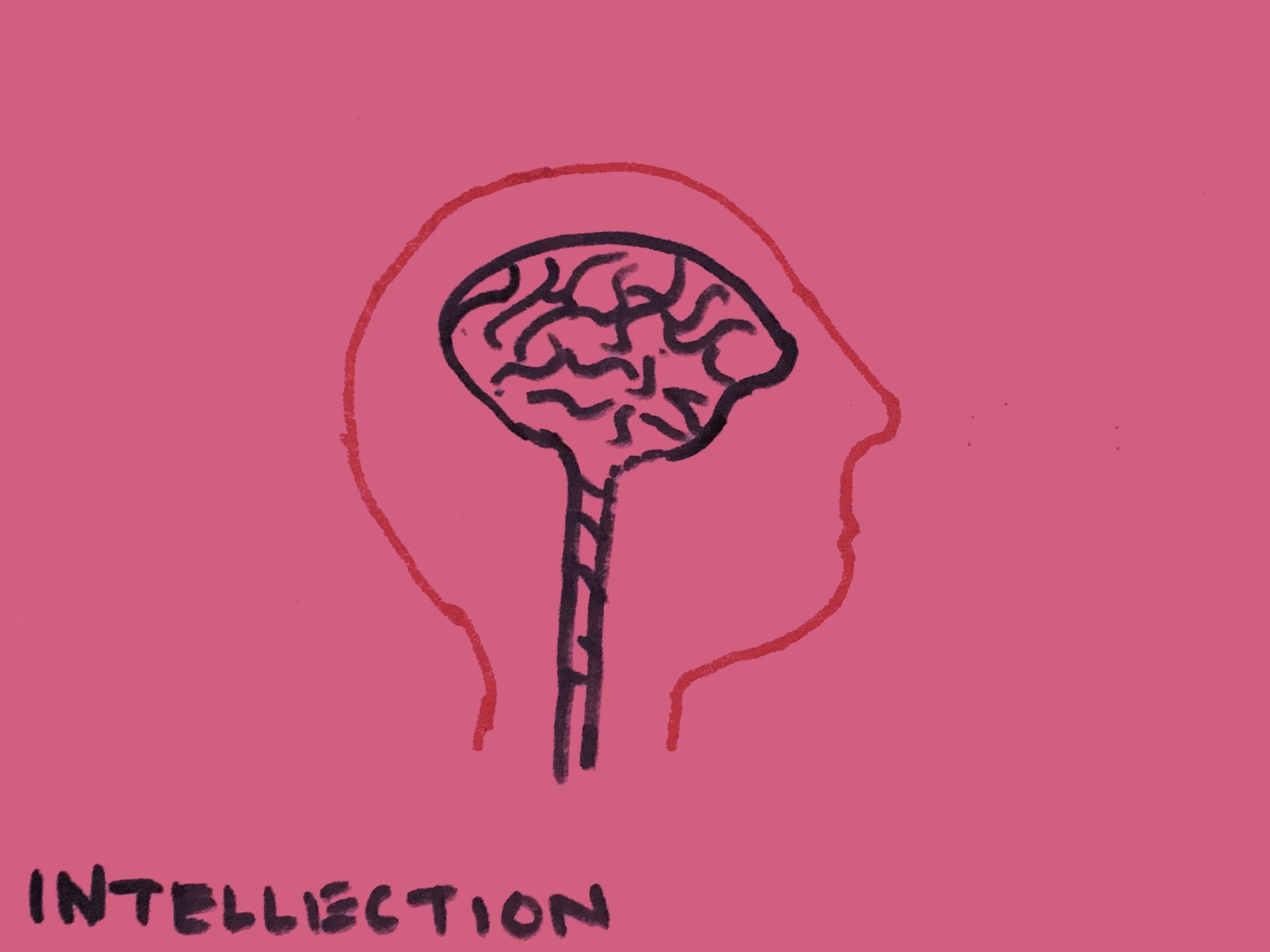 Intellection Strengthsfinder Thinkning Brain