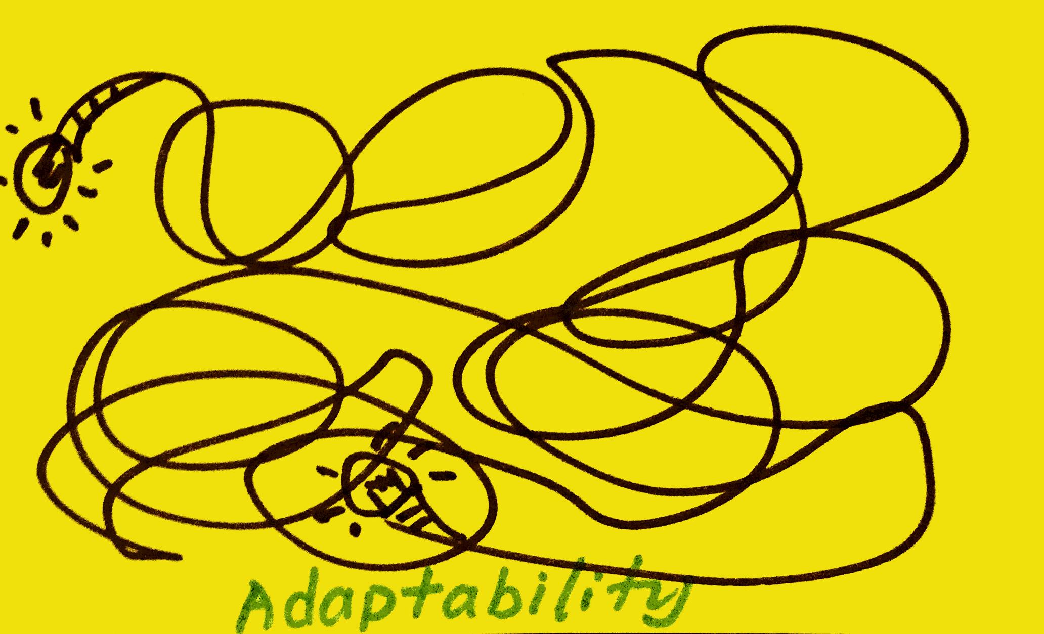 strengthsfinder-singapore-strengths-school-adaptability-6