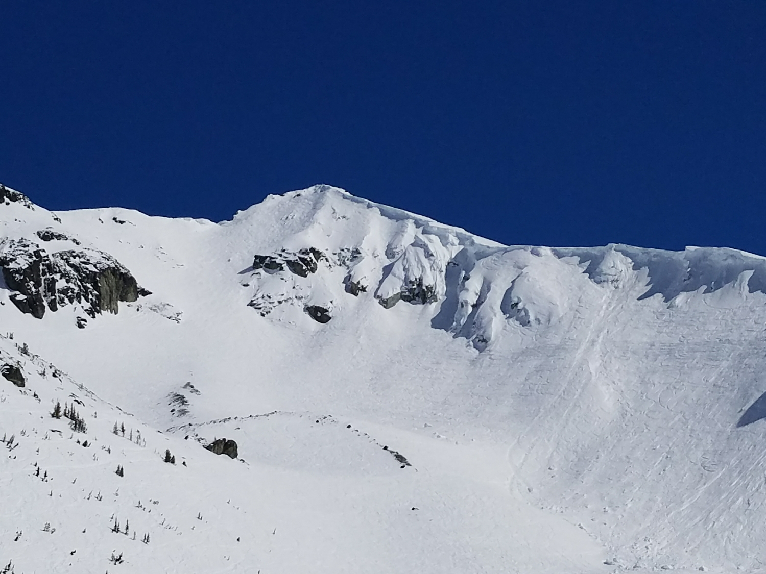 Coulior Extreme, Blackcomb