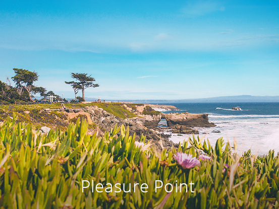 pleasure-point.jpg