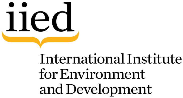 logo_iied_0.jpg