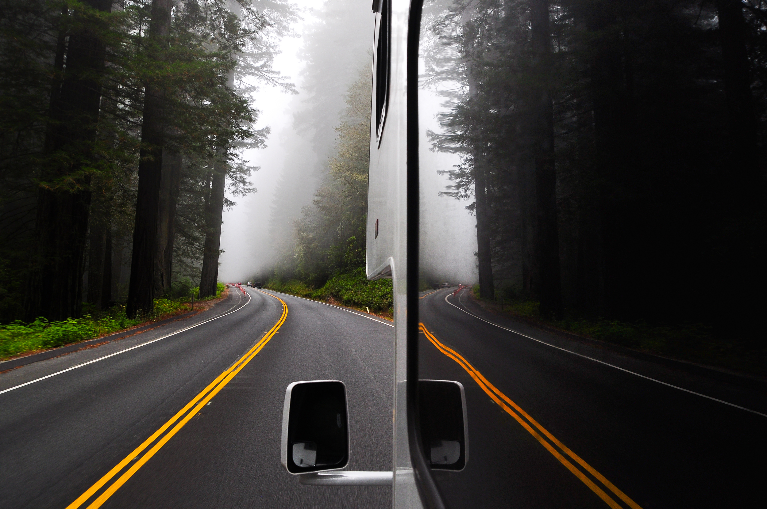 39) Oregon Fog-42.jpg