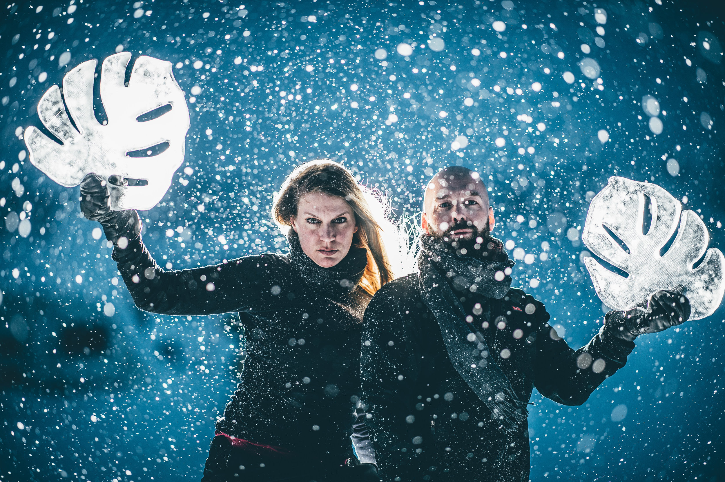 Art suite - Monstera-Nina Kauppi & Johan Kauppi- ICEHOTEL 28  Photo by - Asaf Kliger (1 of 1)-2.jpg