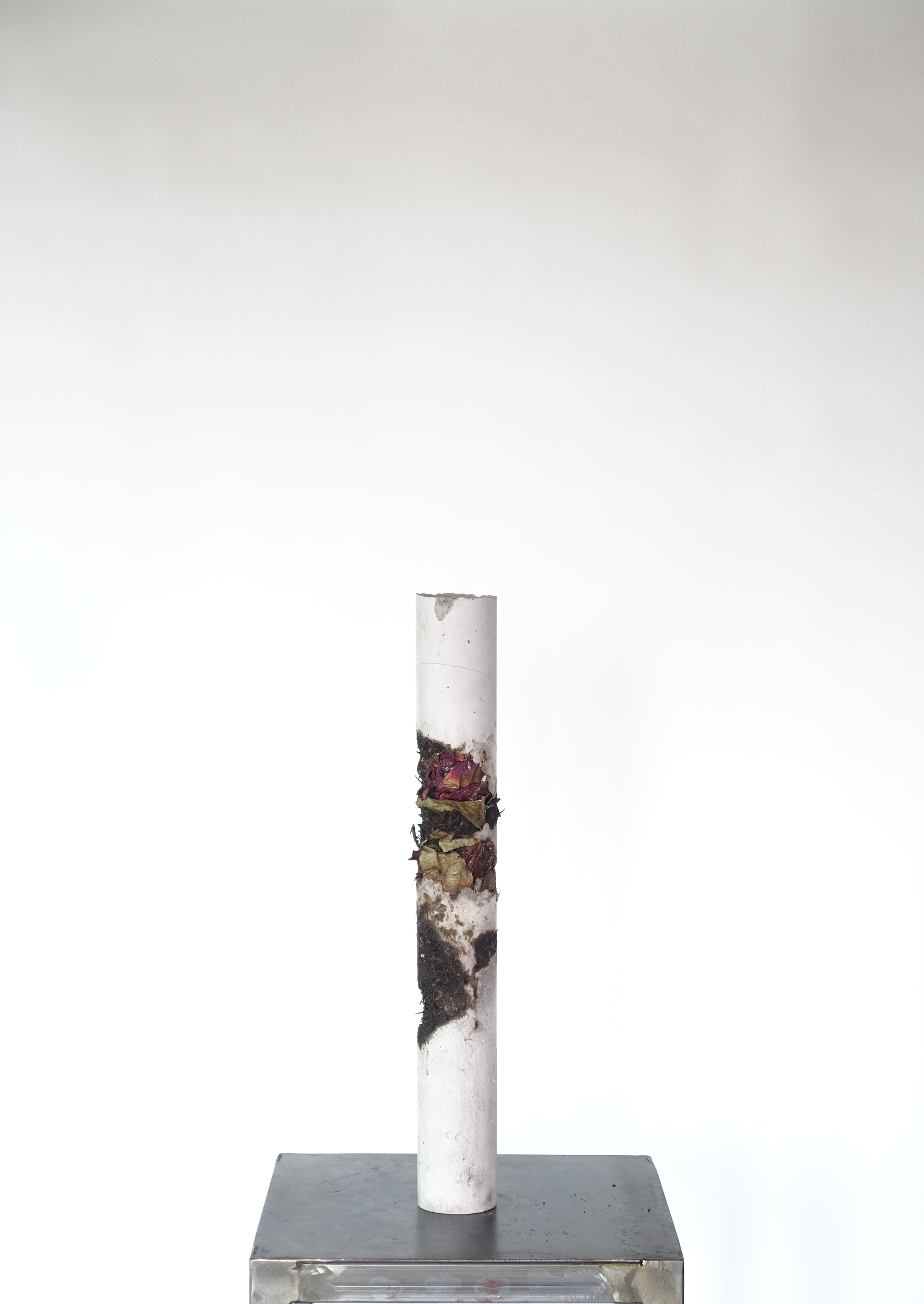 Still Life #3 Rose-Michele Tiberio.JPG