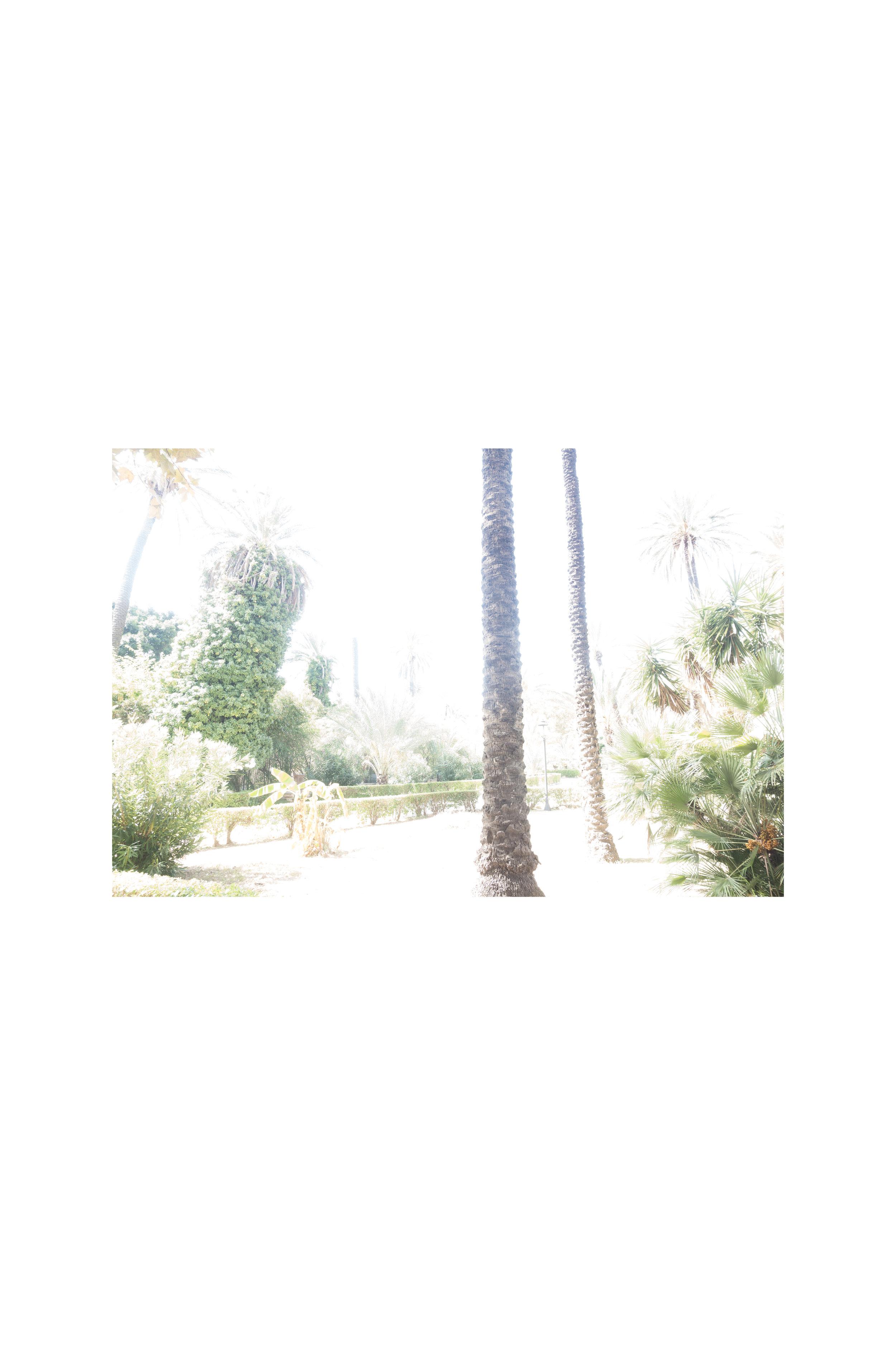 Luogo di nascita, Villa Bonanno-32x48cm.jpg