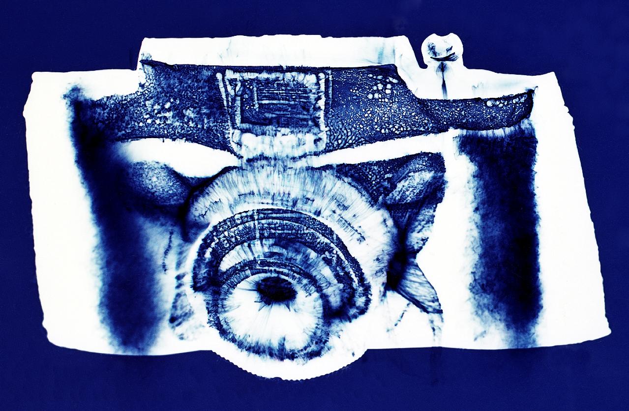 Camera #5 1997, Penelope Davis, type c print, 76x105cm