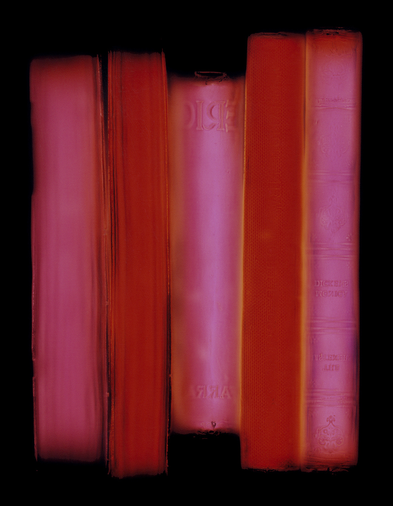 Fiction-non-fiction,Penelope Davis, 2008, type c print, 100x80 & 150x12cm