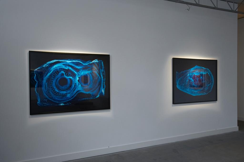 Installation view , Penelope Davis,Nellie Castan Gallery 2008
