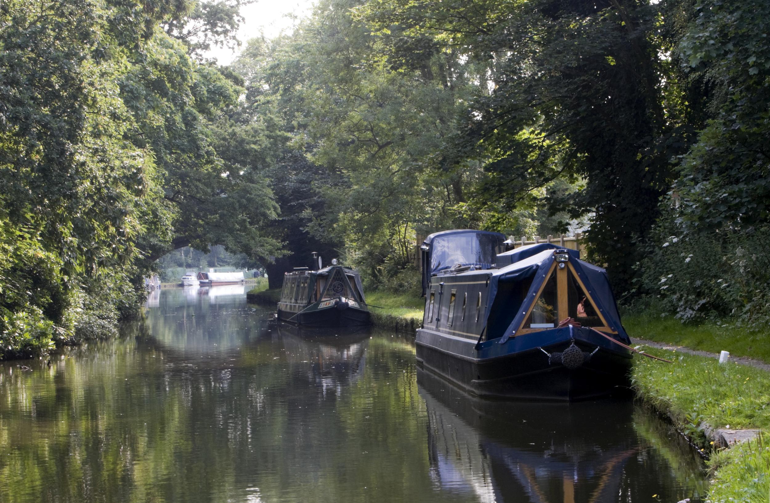 White_Mills_Marina_boats_moored.jpg