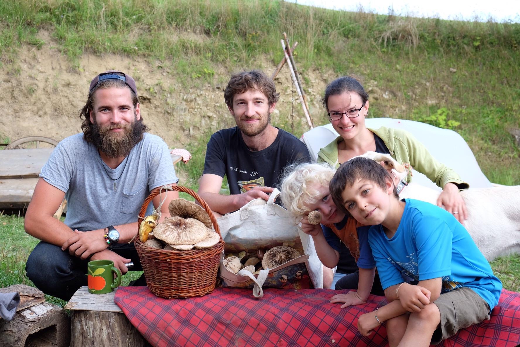 Cueillette aux champignons