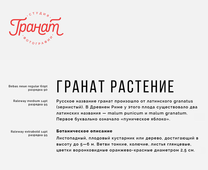 ↑ Фирменная типографика.