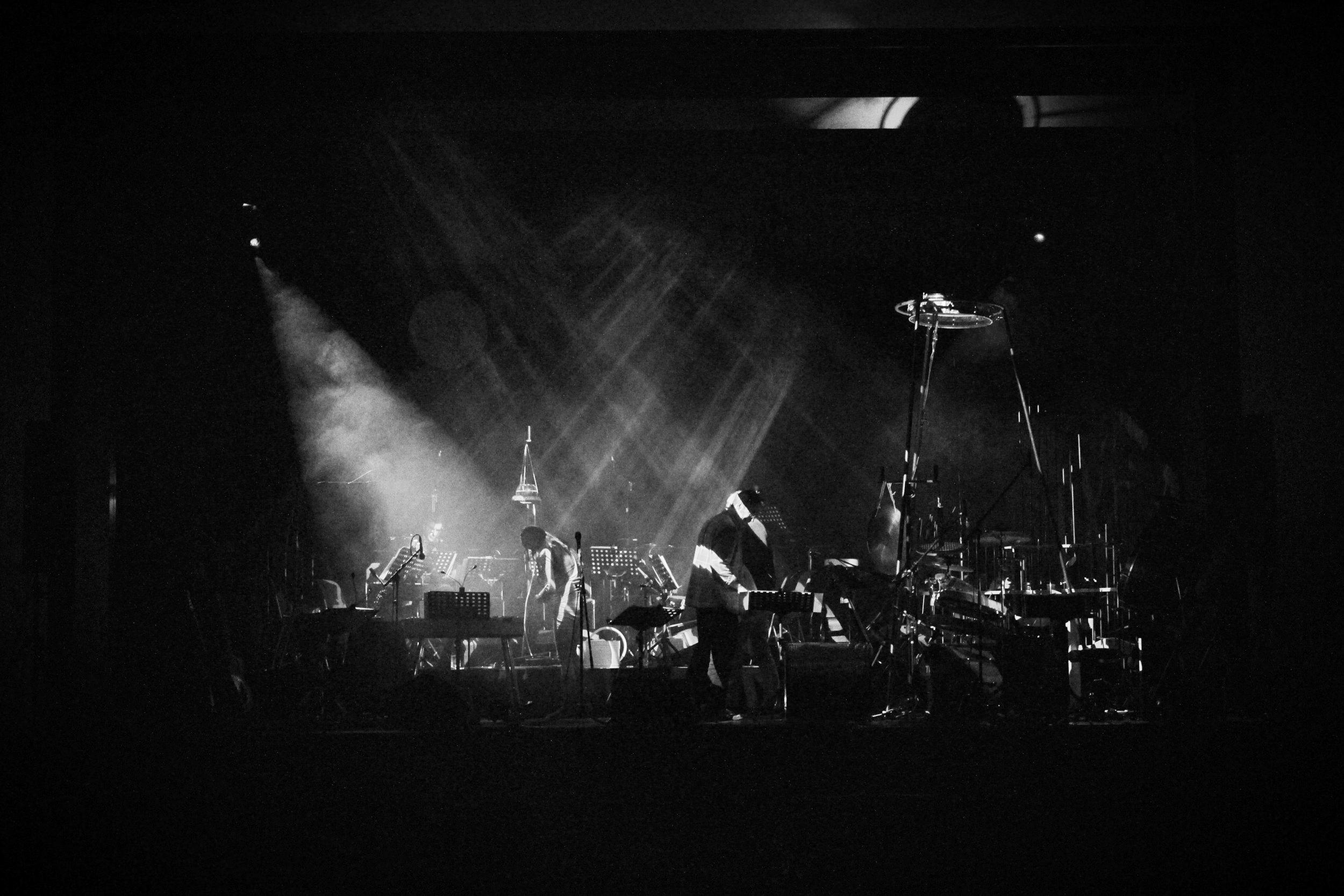 Wildling Drum Stage.jpeg