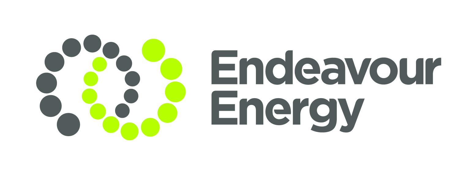 Endeavour Energy LOGO PMS C MASTER.jpg