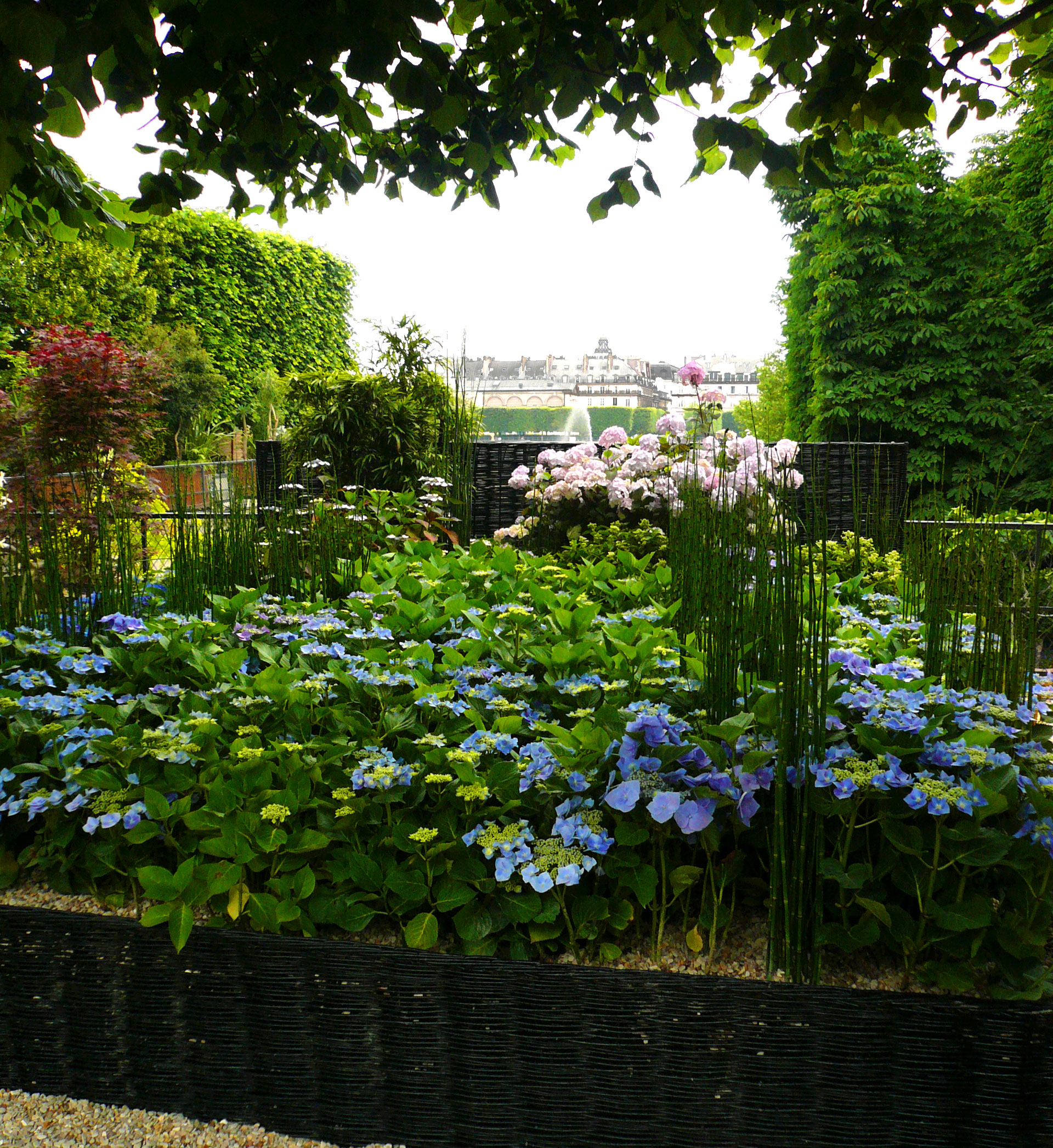 Jardins_Jardin_Jardin_des_Tuileries_Paris_France_Atelier_Jardins_Christian_Préaud_02