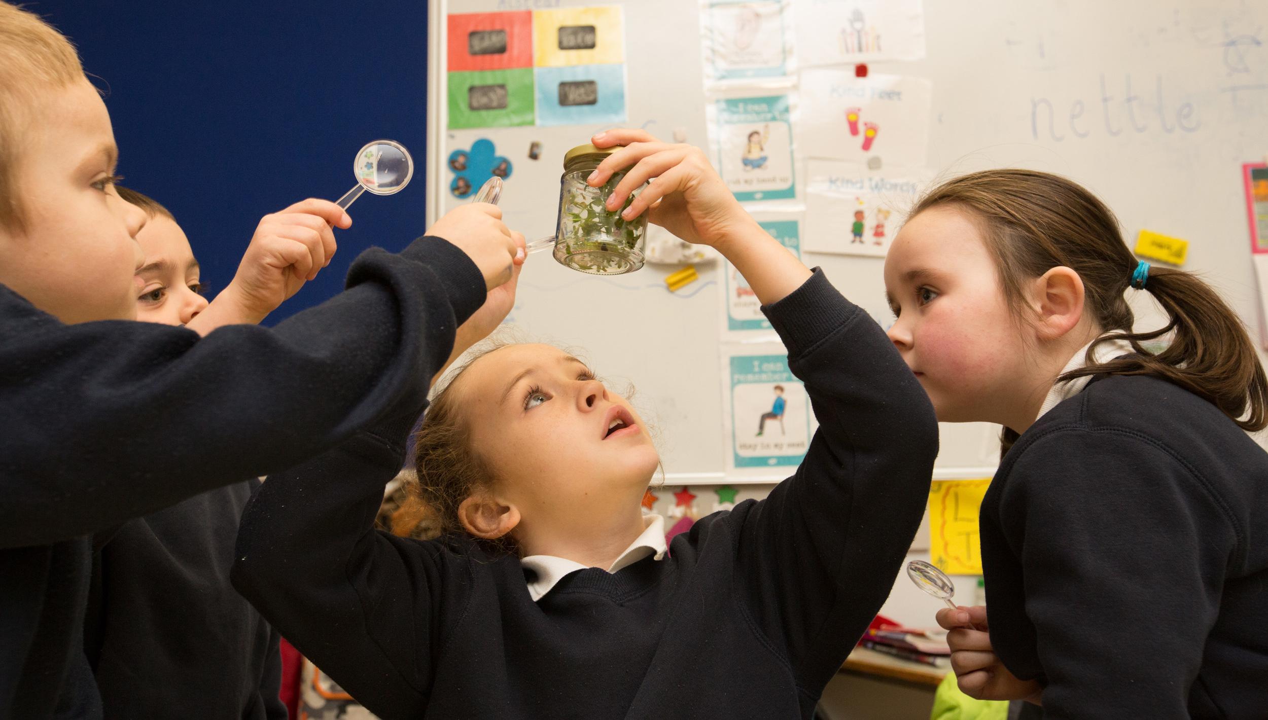 © Green-Schools Ireland