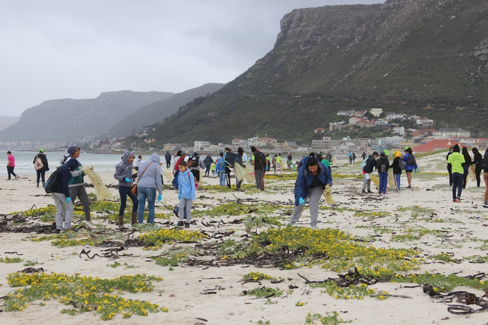 Eco-Schools involved in marine conservation in South Africa