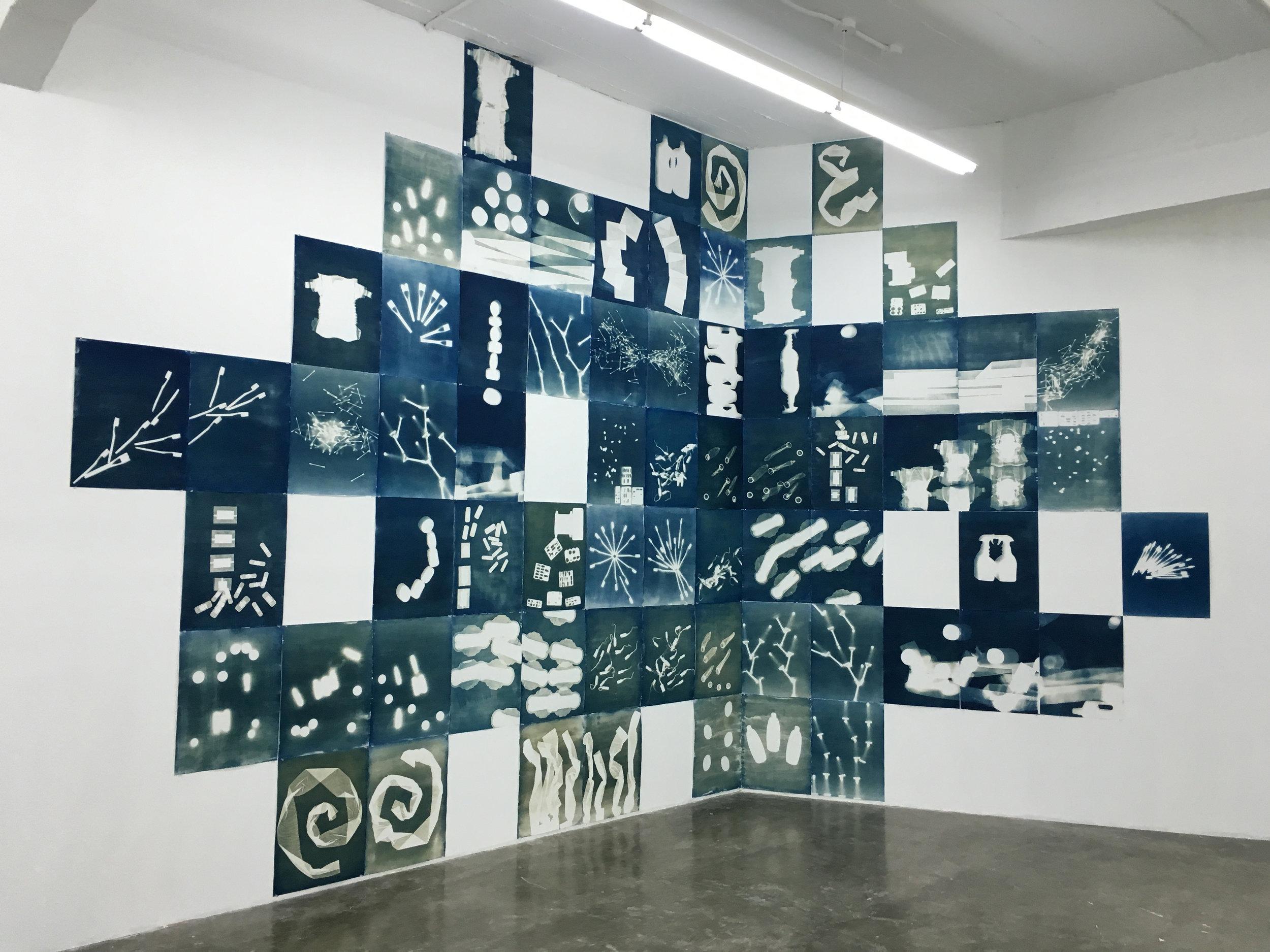 Inventario Personal (2016) Espacio Monitor, Centro de Arte Los Galpones. Instalación de 68 Cianotipos realizados en papel de algodón. 58x44 cm cada uno en pared de 8 metros longitudinales por 4 metros de altura.
