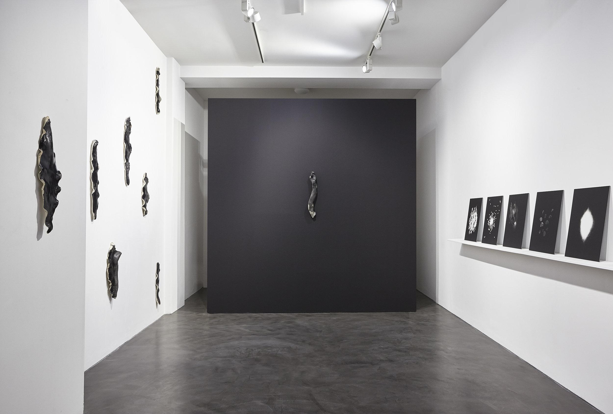 Installation view. Photo: Joseph Devitt