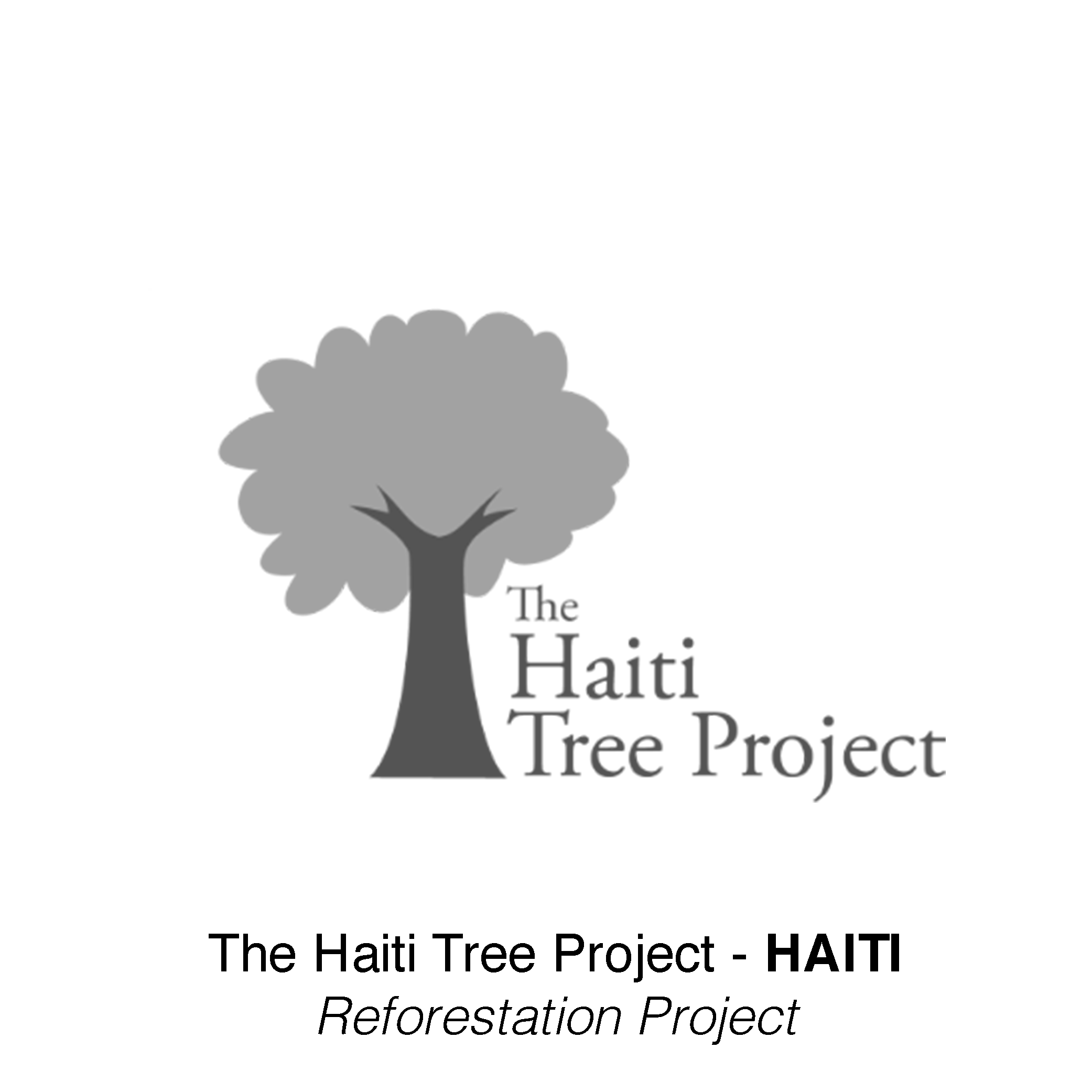 Haiti Tree Project -  Haiti   Reforestation Project