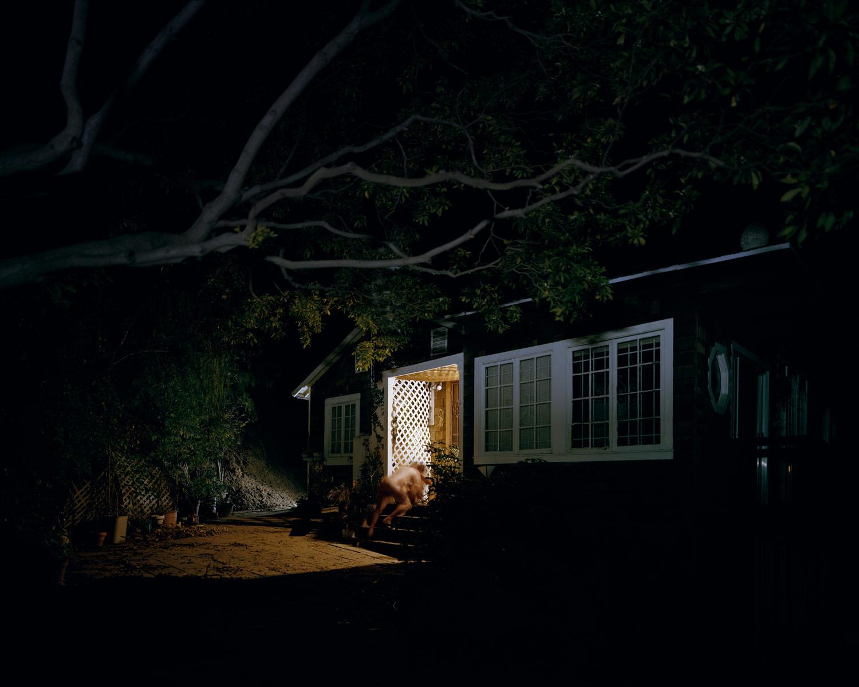 Nocturnal#3.jpg
