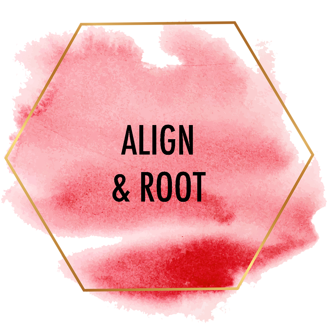 align and root image copy.jpg