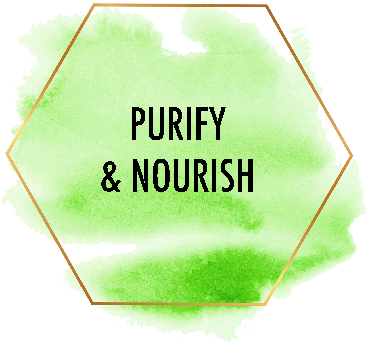 purify and nourish.jpg