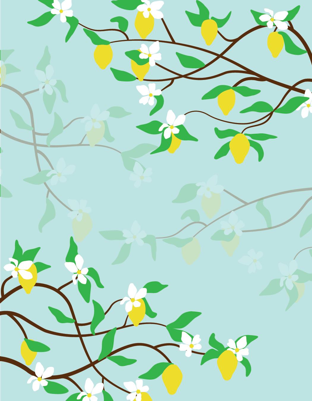 lemon picture-01.png