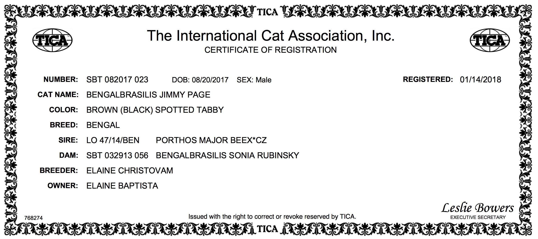 CERTIFICATE OF REGISTRATION Jimmy Page CAROLINA.jpeg