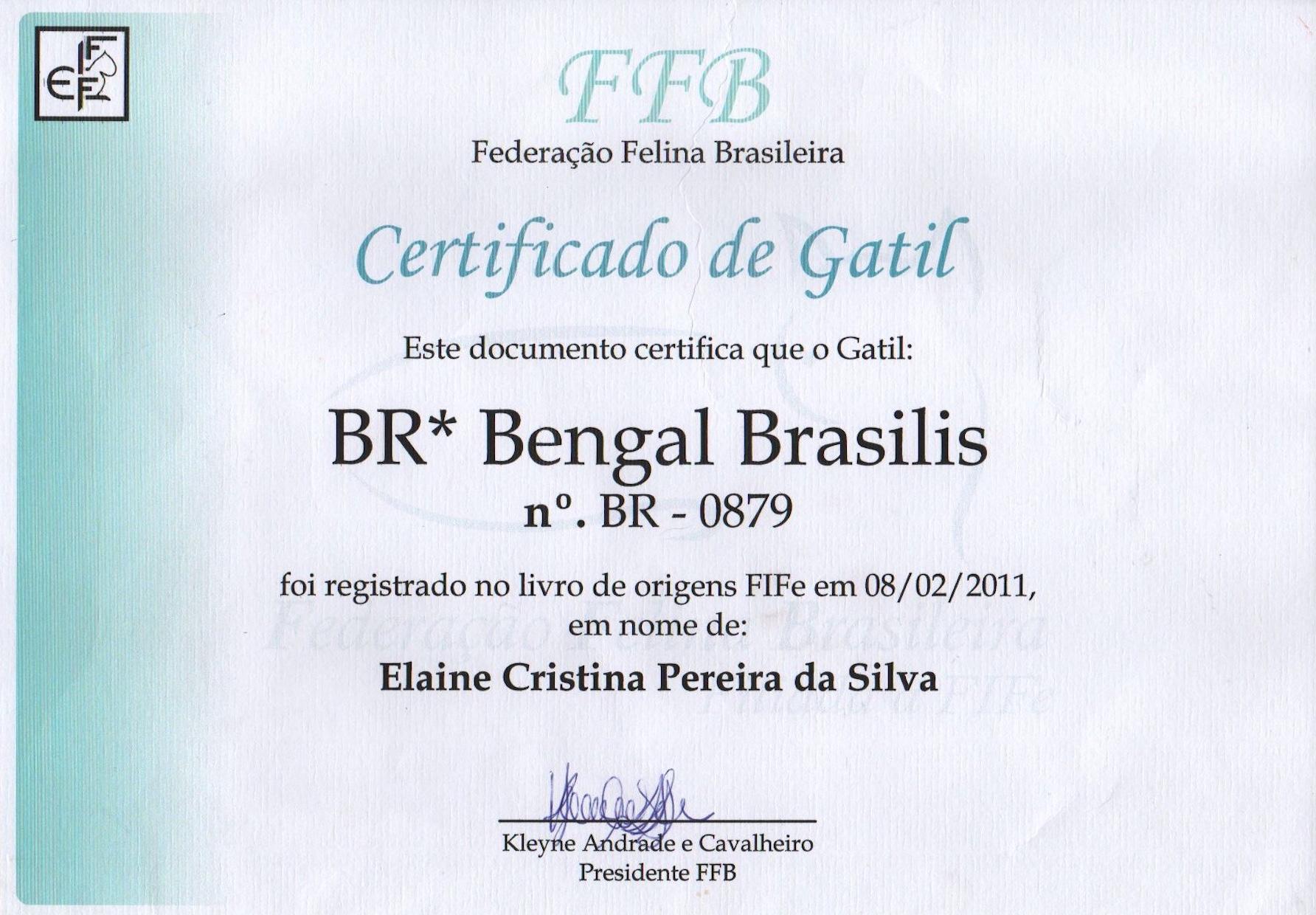 CBG Cattery Certificate.jpeg