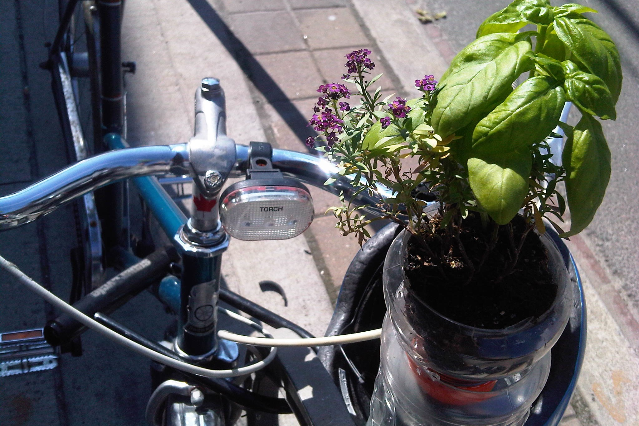 Bike-and-flower