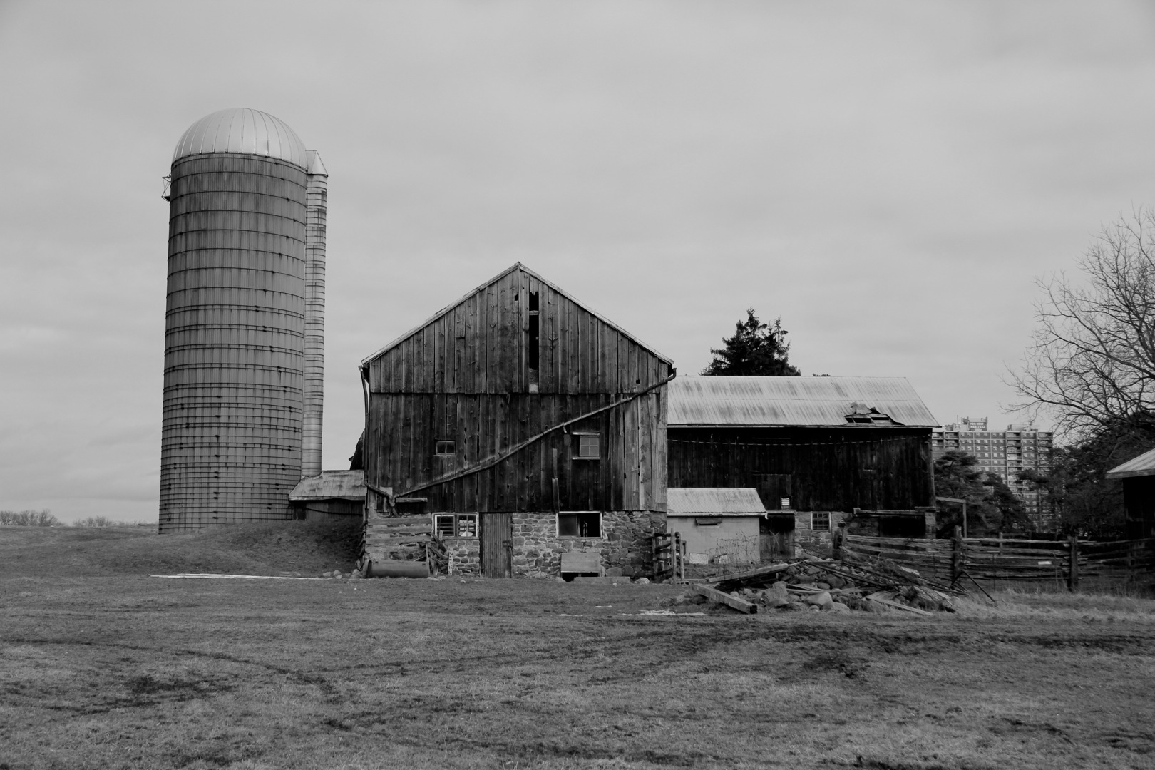 IMG_8136-farm.jpg