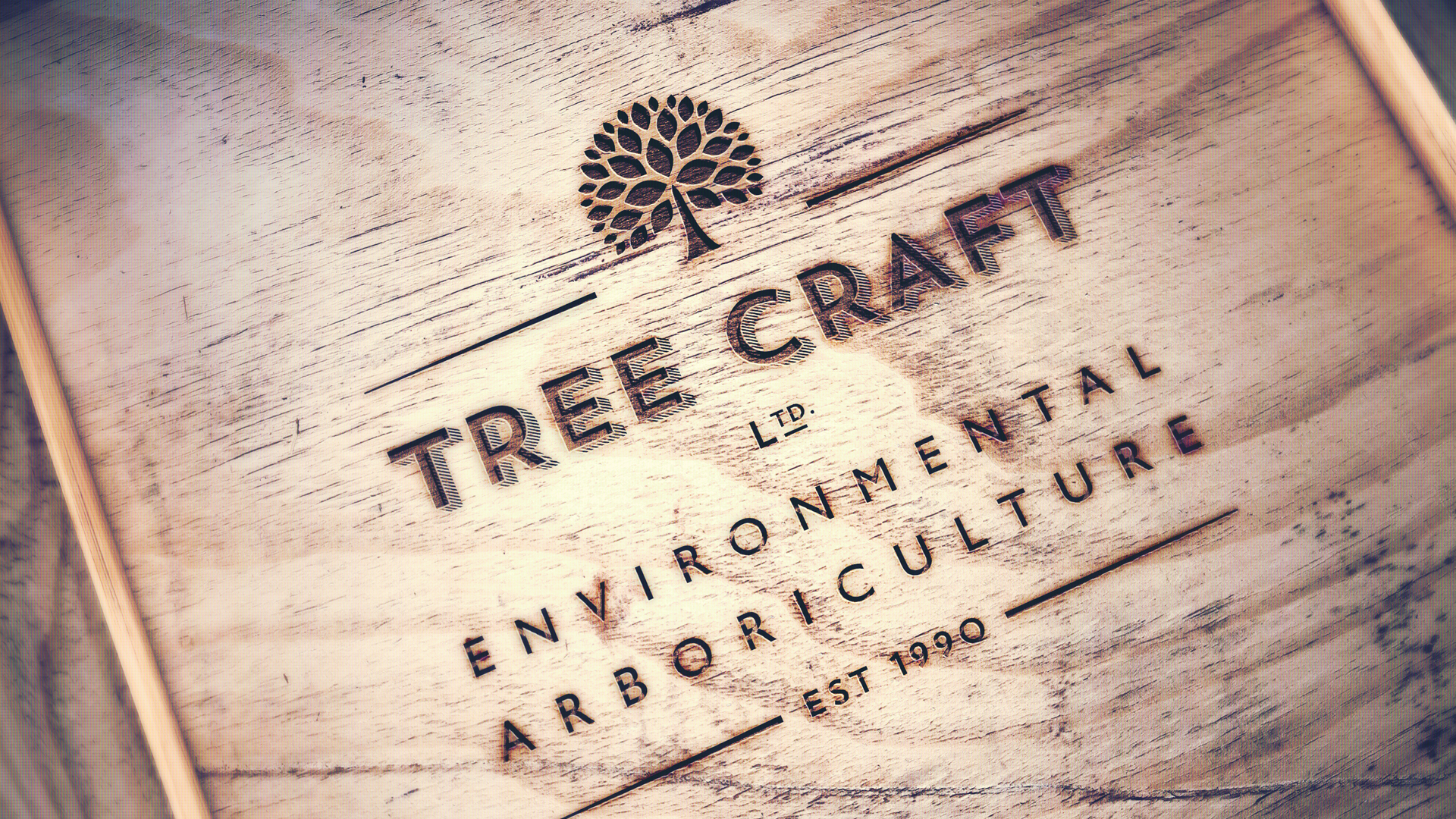 Logo design for Tree Craft, Tree Surgeons in Sevenoaks by Ditto Creative, Kent
