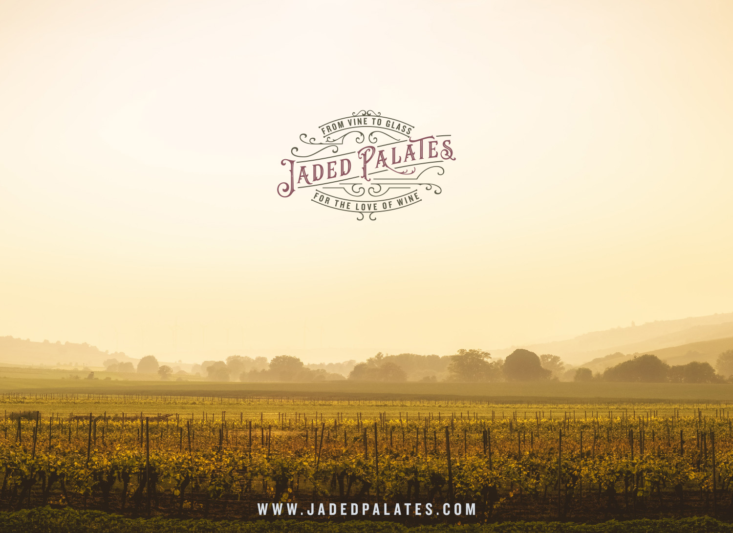 Jaded Palates, independent wine merchant in Devon, logo design and branding by Ditto Creative, boutique branding agency Kent