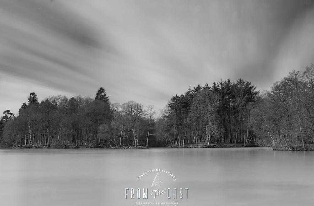 The Lake 1000px.jpg
